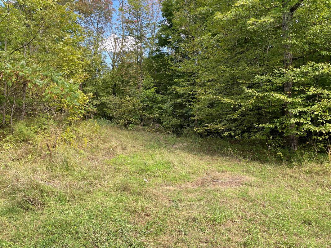 $89,000, Lot 14 Warrington Road, Sharbot Lake, Ontario  K0H 2P0 - Photo 2 - 40163914