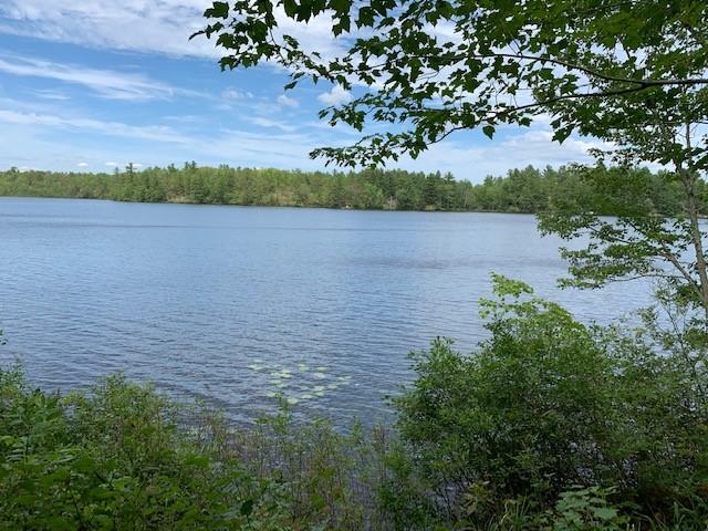 Echo Lake, $209,900, Echo Lake Road, Wagarville, Ontario  K0H 2K0 - Photo 1 - RP4718602437
