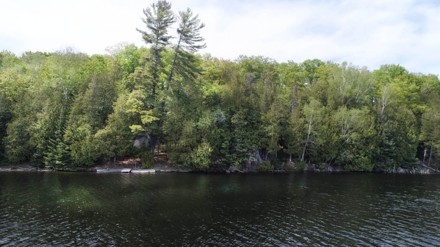 Swaugers Lake, $139,000, Swauger Lake Road, Ardoch, Ontario