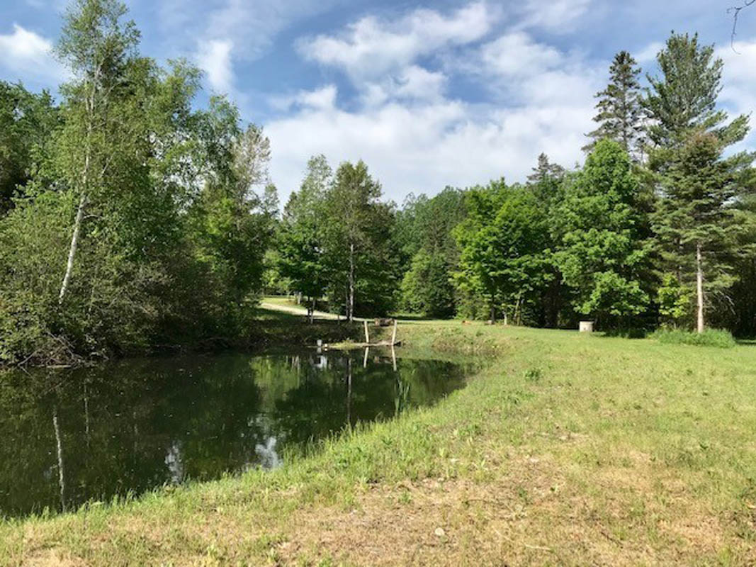Sand Lake Road, $159,000, Plevna, Ontario  K0H 2M0 - Photo 5 - RP3429058958