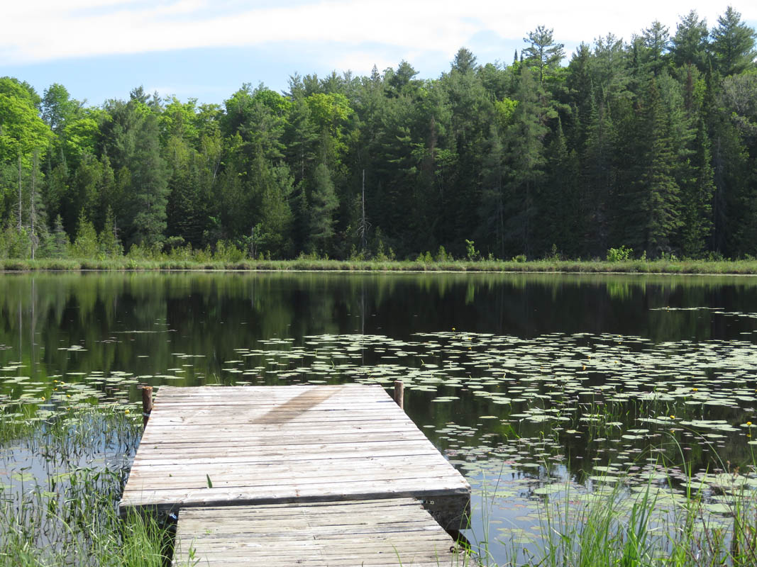 Sand Lake Road, $159,000, Plevna, Ontario  K0H 2M0 - Photo 7 - RP3429058958