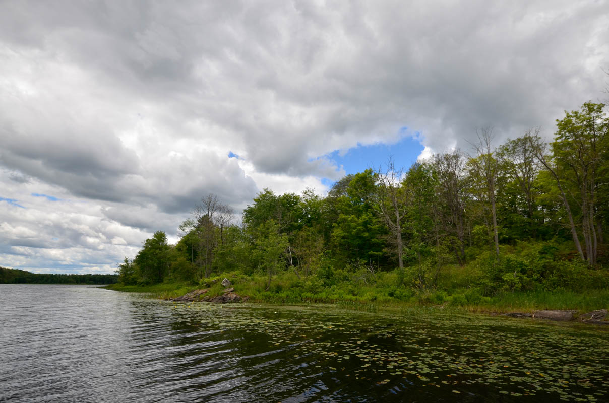 Garrison Lake, $270,000, 2334 Garrison Lake, Arden , Ontario  K0H 1B0 - Photo 5 - RP8619526468